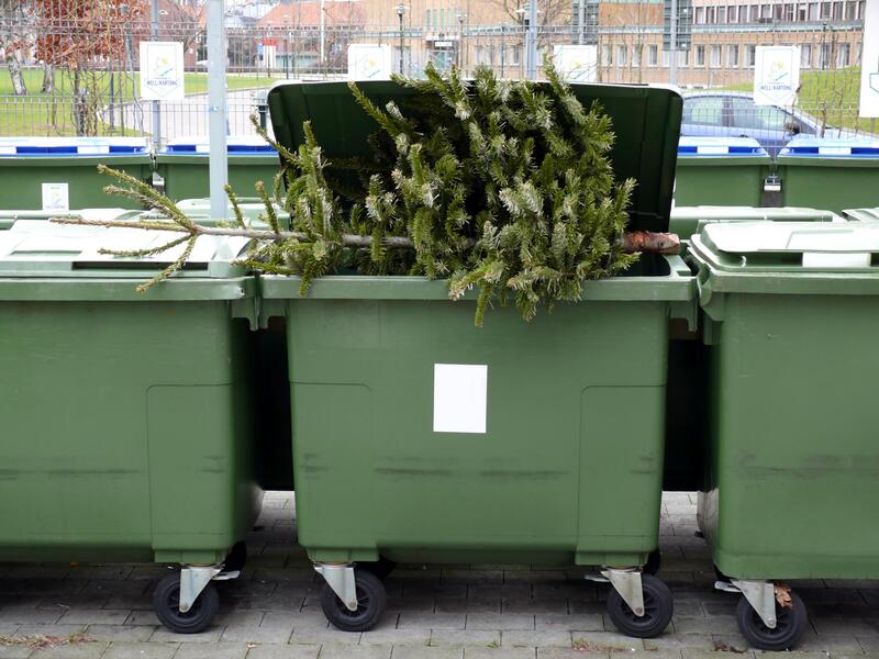 a christmas tree on a dumpster